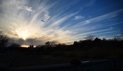 Montréal Sunset