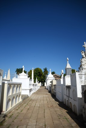 Granada – A much happier looking cemetery than our French ones, although I was told there was a big risk of getting mugged...