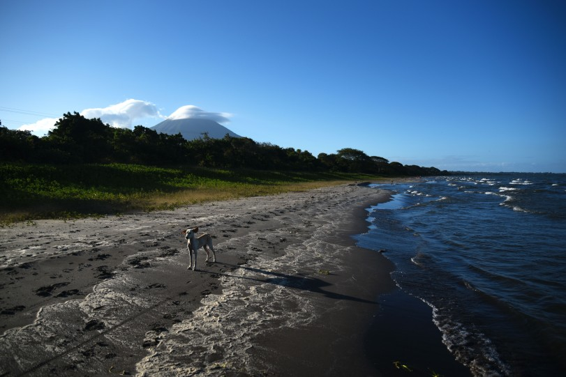 Ometepe – Ears to the wind!