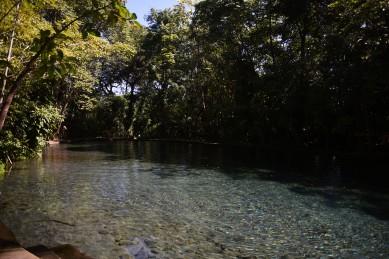 Ometepe – Ojo de Agua