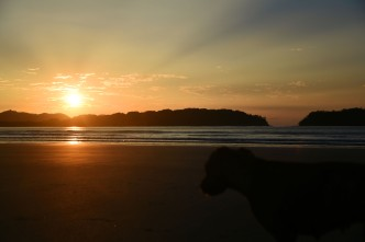 Sunrise with dog