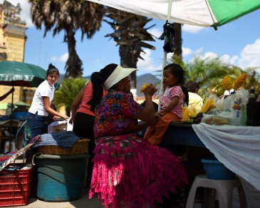 Antigua – Mangoes!