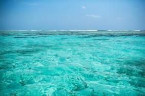 Caye Caulker – Reef barrier