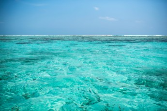 Caye Caulker – Reef barrier